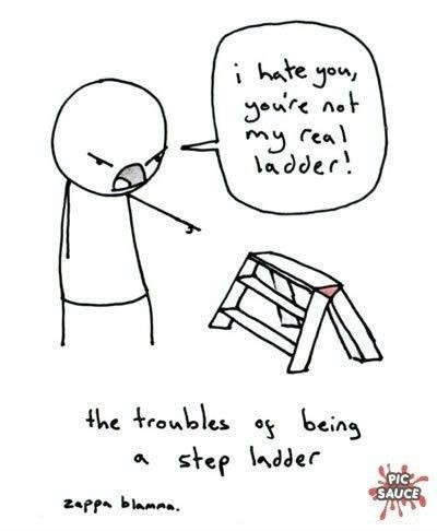 You're not my real ladder, you're just a step ladder.