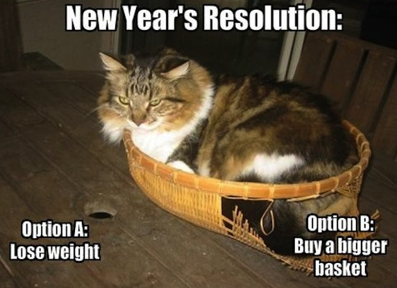 fat cat new year