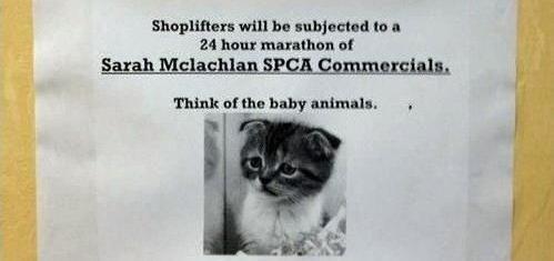 Sad Kitten Music