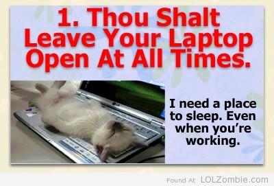 1-Laptop
