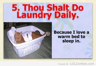 5-Laundry