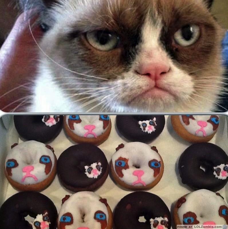 Grumpy Cat Donuts