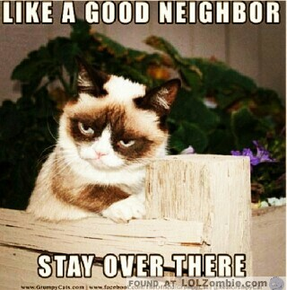Grumpy Cat Neighbor