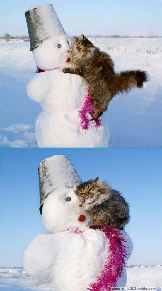 Cat Cuddling with Snowman