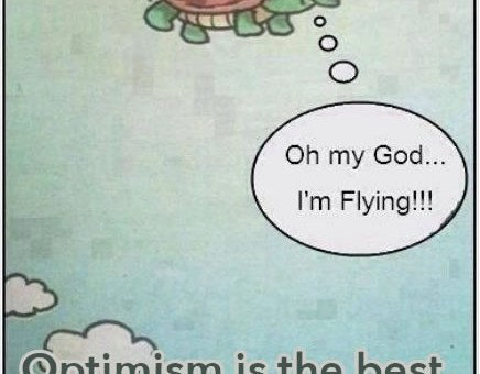 Upside down turtle flying