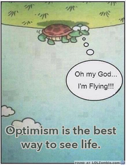Upside down turtle flying