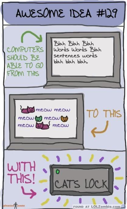 Cats Lock