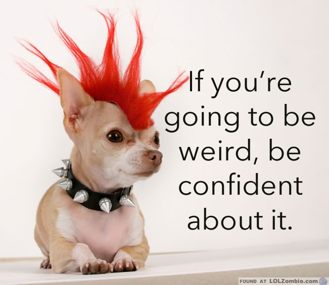 Weird Confident Dog