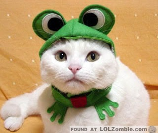 Not sure if frog eyes are cute or creepy.