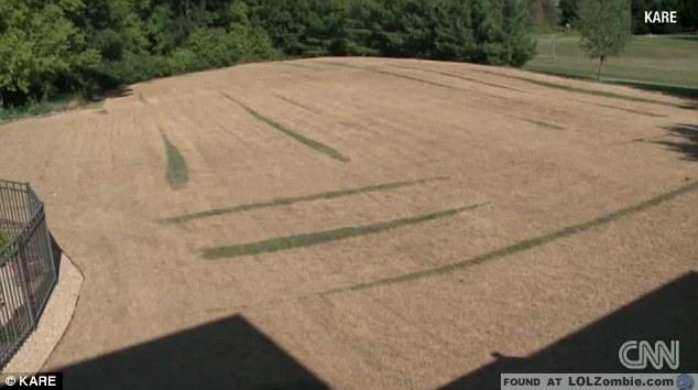 Unfortunately, that was too much fertilizer.