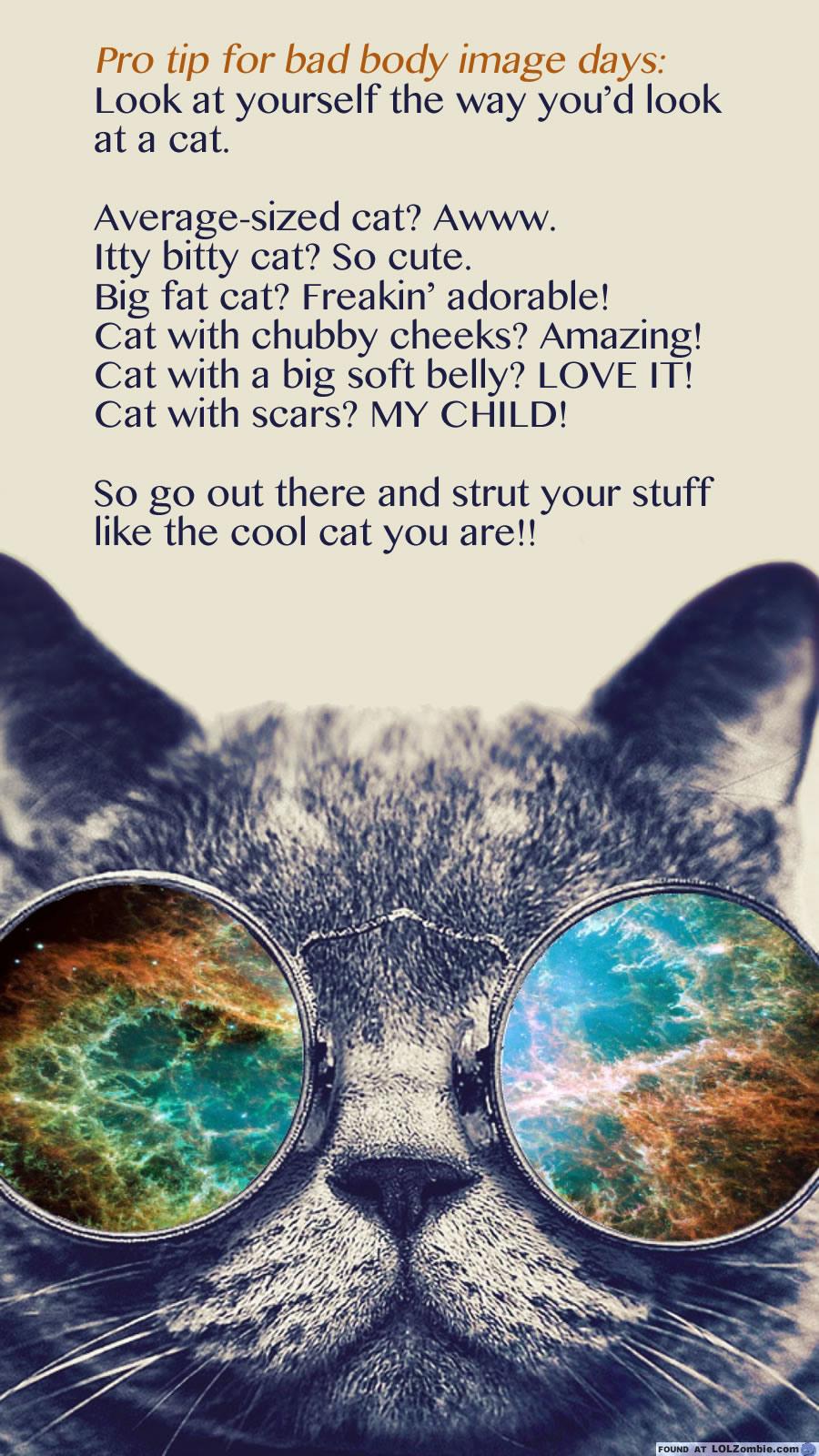 Body Image Cat