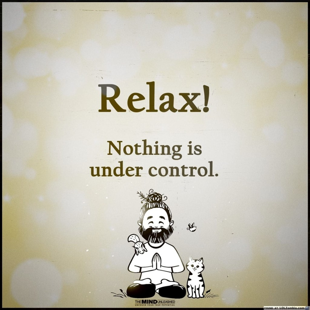 Image result for relax nothing is in control