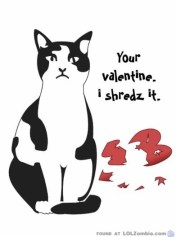 I shredz it.