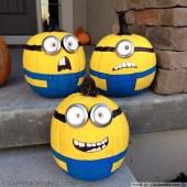 despicable-me-minion-pumpkins-11