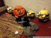 despicable-me-minion-pumpkins-13
