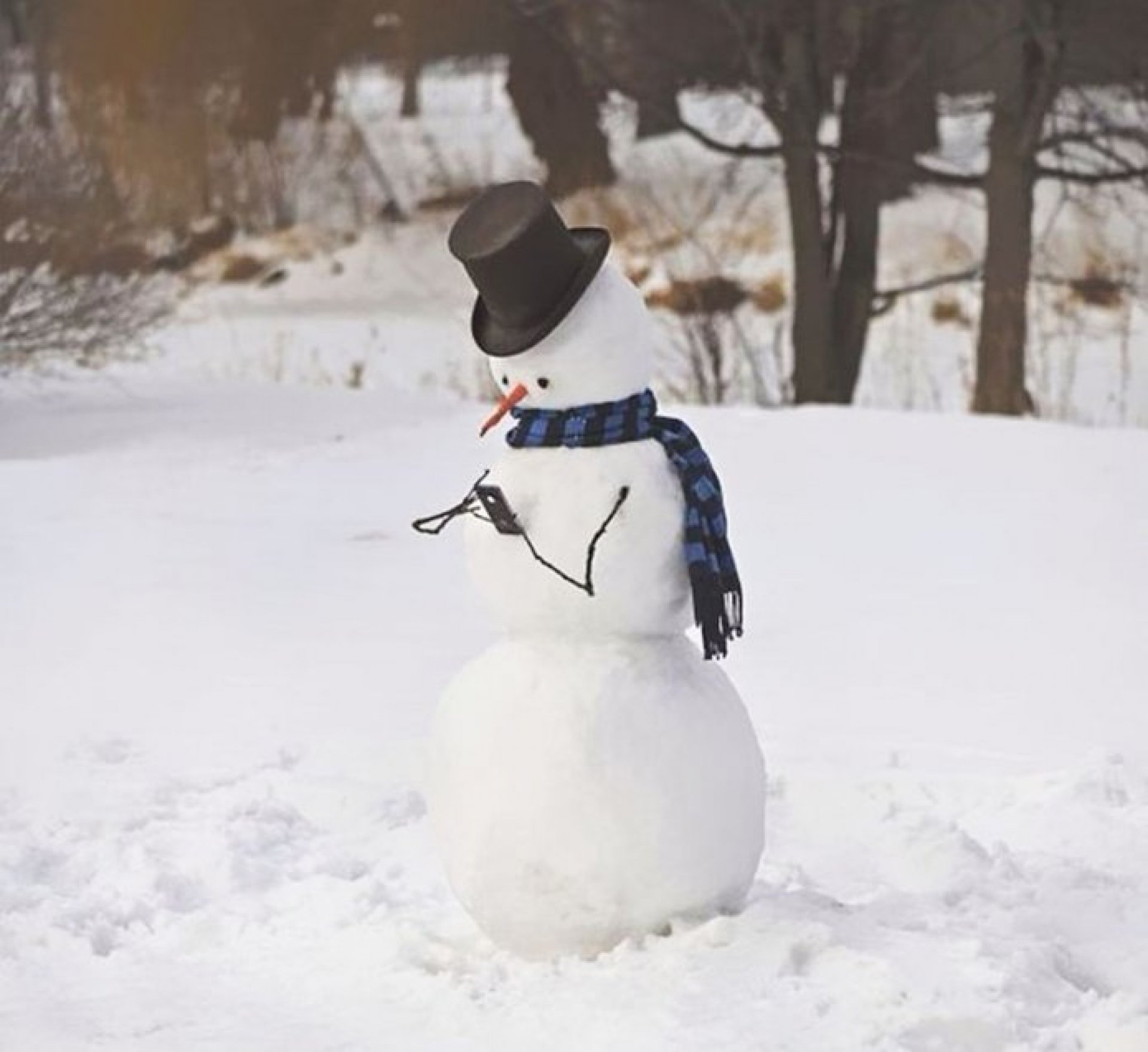Snowman looking at his cell phone.