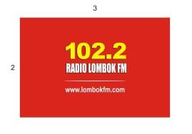backdroop radio simple