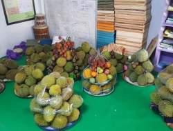 Perayaan Maulid Ala Pringgasela Lombok Timur Viral di Medsos