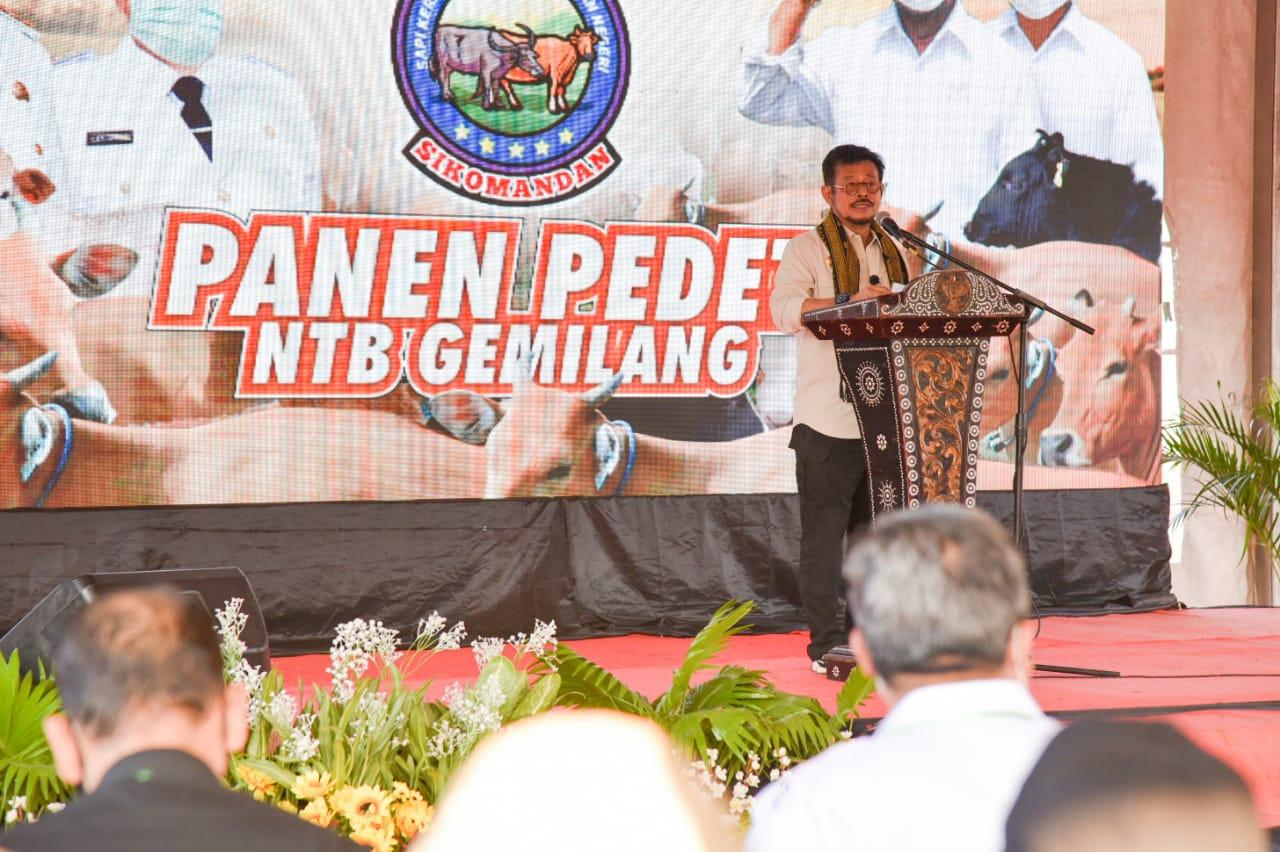 Panen Raya di Loteng, Mentan Bertekad akan Terus Perkuat Pertanian di Provinsi NTB