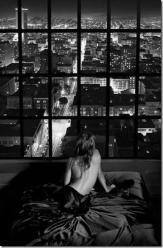 foto finestra sulla città
