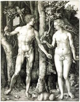 Albrecht Durer The Fall of Man (Adam and Eve) 1504