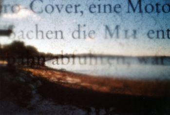 Buchfilter (3)