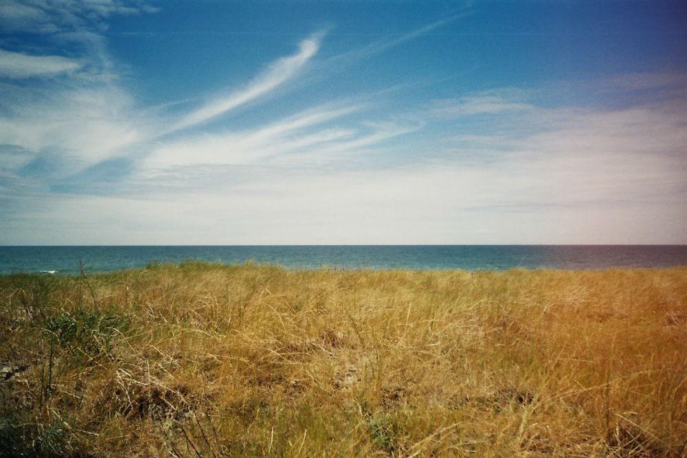 Sommer 15 (c) Lomoherz (3)
