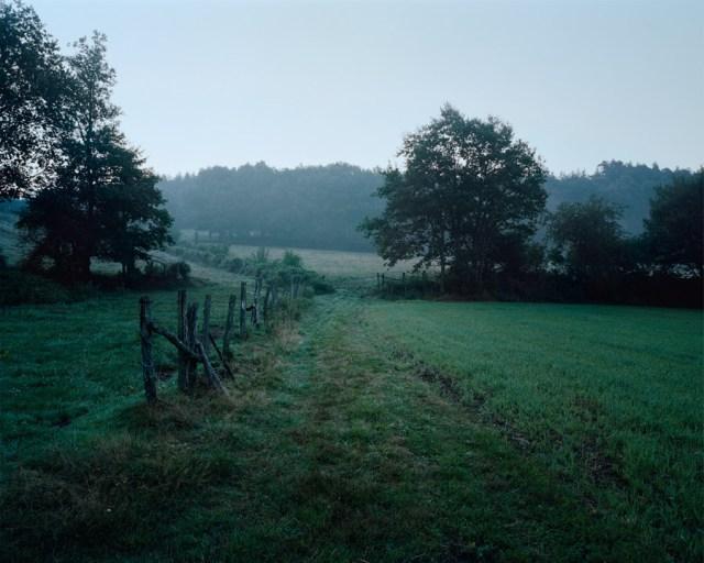 Shot at Dawn by Dewe Mathews