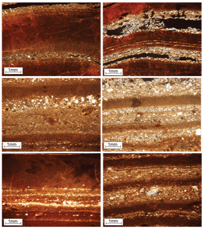 Examples of varves, only visible when viewed under a microscope. Image by Rachel Devine.