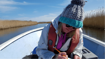 Lucy undertakes fieldwork across the Norfolk Broads.