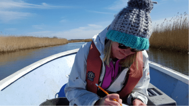 Lucy undertakes fieldwork across the Norfolk Broads. Image copyright Lucy Roberts.