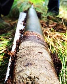 Lake sediment core we retrieved from the base of a modern peat bog. Image copyright Rachel Devine.