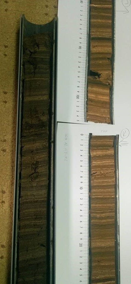 Varved sediment core from Lake Głęboczek (top) with high resolution image (bottom).