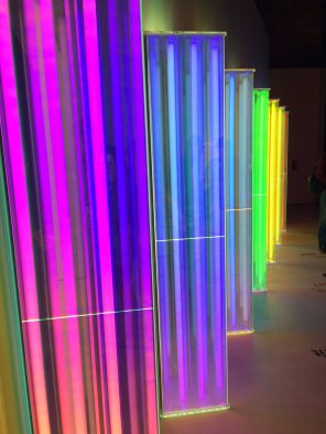 Wandering through the Colour And Vision exhibit in 2016, being astounded once again by the diversity and processes of the natural world. Image by Liam Fitzpatrick.