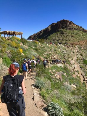 Cohort three heads into Palm Canyon. Image copyright Lucy Roberts.
