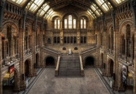 Natural History Museum - Hintze Hall