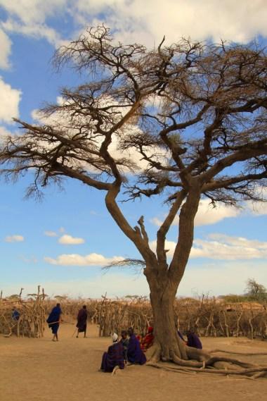 Serengeti 039
