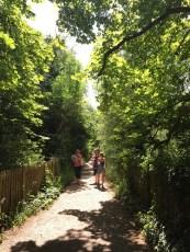 Hampstead Heath ladies pond