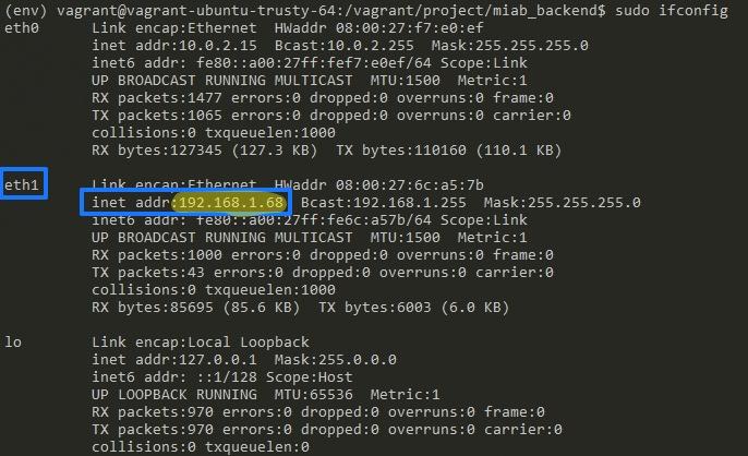 Server IP Address Screenshot