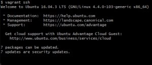 Screenshot of Git Bash blank terminal input