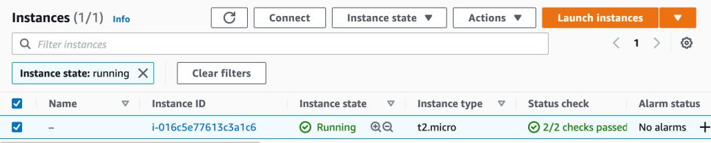 Screenshot of an EC2 instance running in the AWS console.