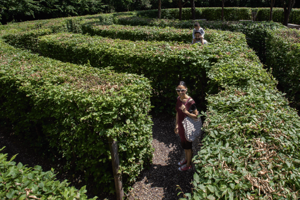 Woman smiling at the camera through the maze at Crystal Palace Park