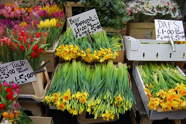 Flower stall with daffodils and tulips