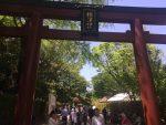息子とデート❤️ー根津神社のつつじ祭り