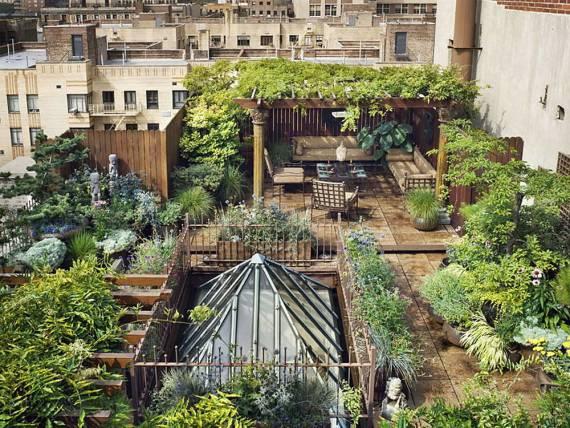 Create An Urban Jungle