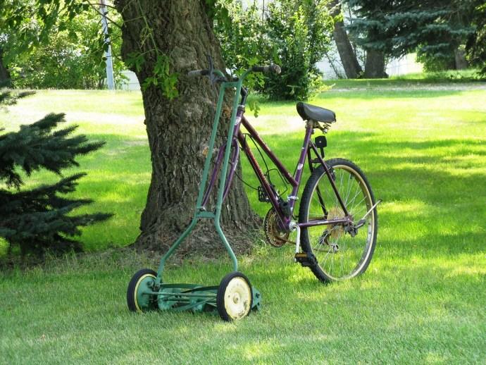 Garden Tips: Which Tools Should A Gardener Keep