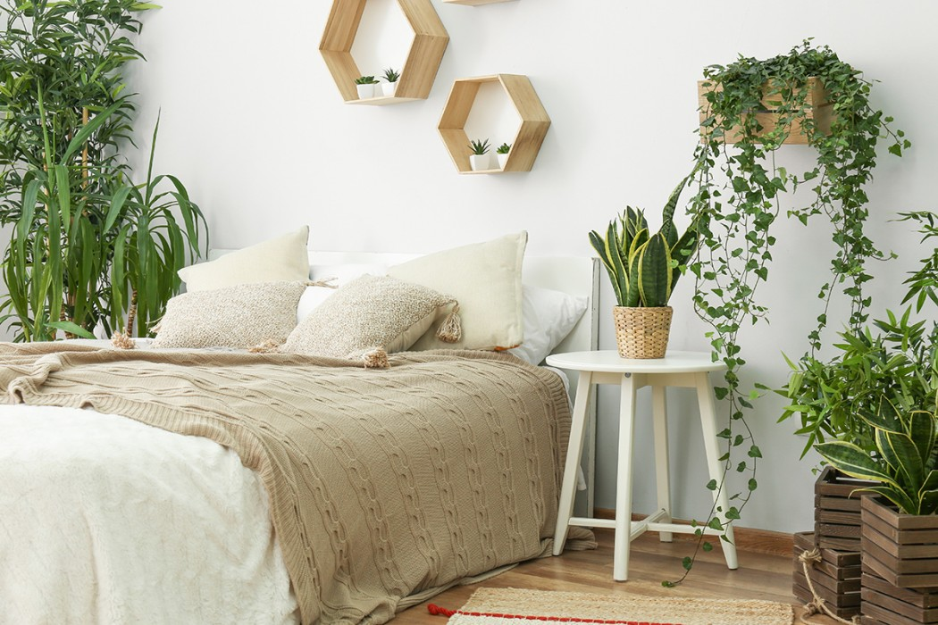 Natural bedroom with lush green plants