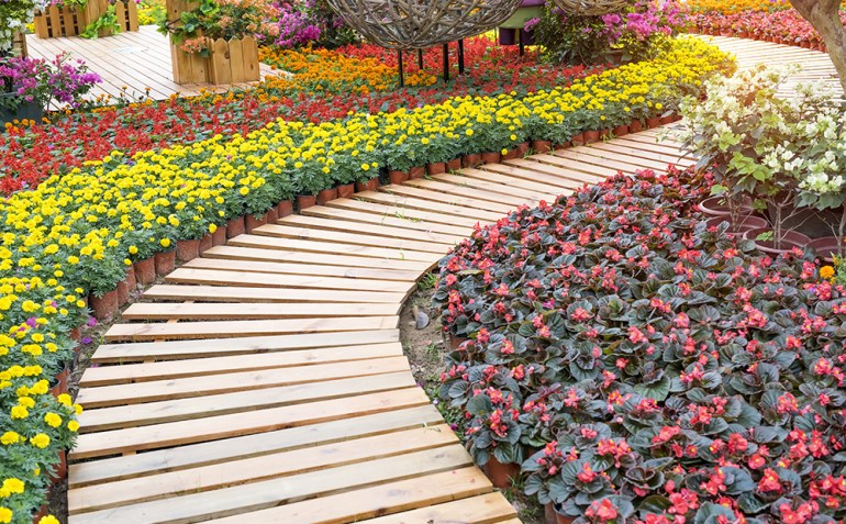 wooden pathway winding in garden with flowers