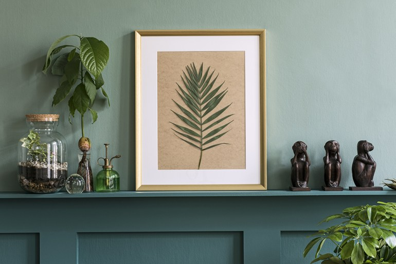 Plant leaf in picture frame on green shelf.