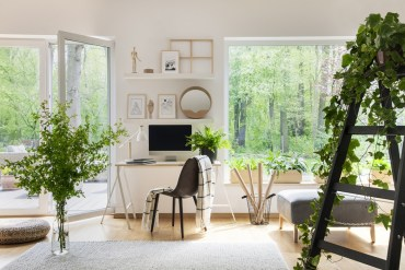 Open white office with large windows, woodland view from office and office full of green plants.
